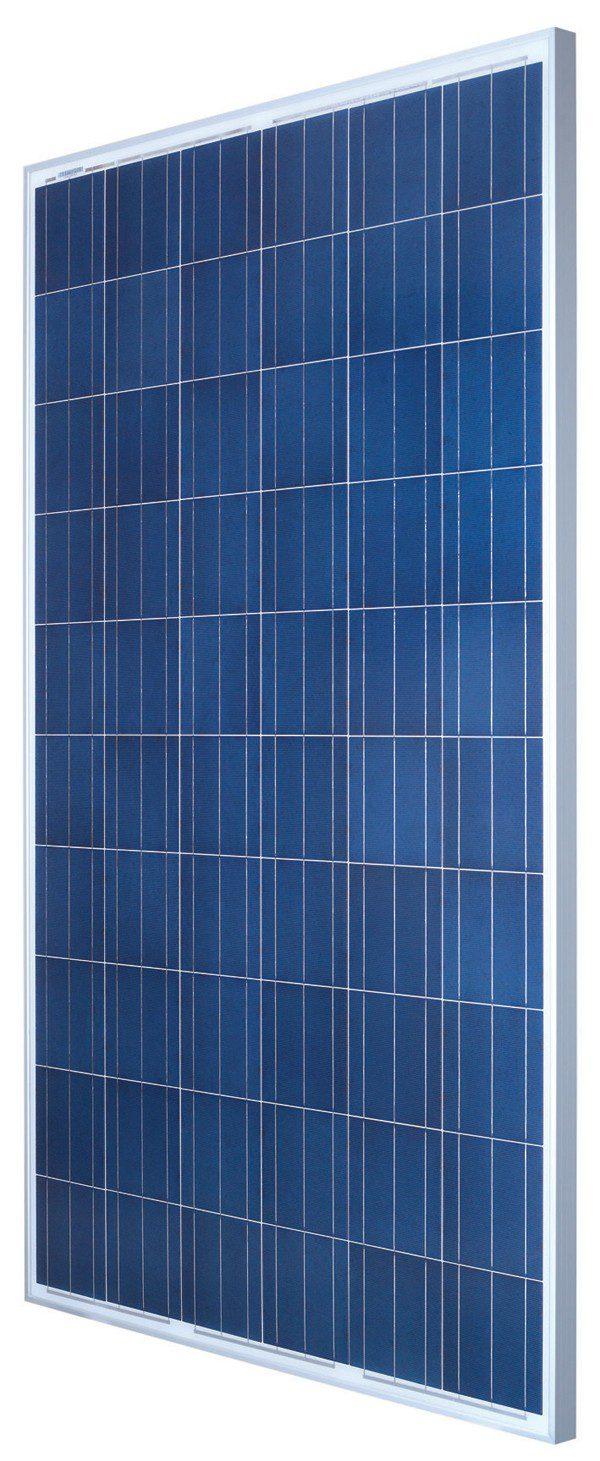 ReneSola Virtus II 250 Watt