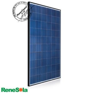 ReneSola Virtus II 300 Watt Poly Solar Panel
