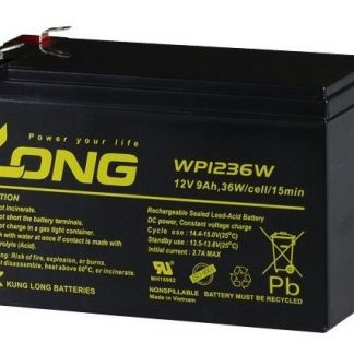 LONG 12v 9AH Battery