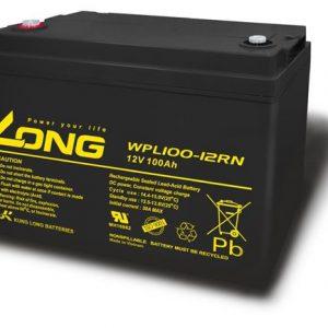 Long 12V 100AH WPL100 Battery