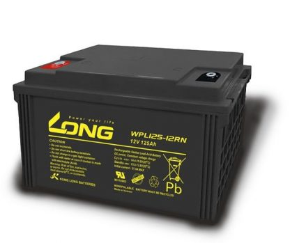 Long 12V 150AH WPL100 Battery