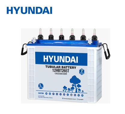 Hyundai-Tubular-battery